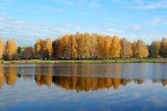 Autumn trees near lake Stock Images