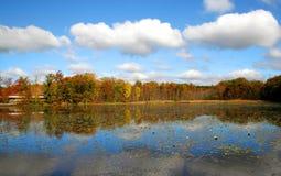 Autumn Trees Near Lake Side Stock Photo