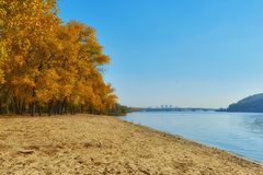 Autumn Trees Near The River, Leaves On Sand. Stock Image