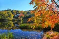 Autumn trees over lake Royalty Free Stock Images