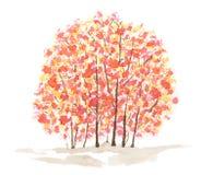 Autumn trees over white background Royalty Free Stock Photo
