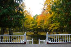 Autumn trees in the Park. Belarus, Kobrin. Walk in the autumn in the Park. Trees have become colorful, yellow, red. Very cozy stock photography