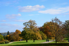 Autumn trees in a park Stock Photo