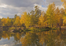 Autumn trees in Park on the shore of the pond Stock Photography