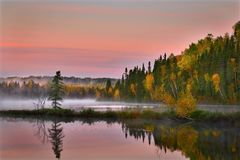 Autumn trees beside a placid lake  Royalty Free Stock Photography