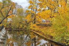 Autumn trees and the pond Stock Image