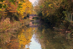 Autumn Trees reflected in the Grand Union Canal Royalty Free Stock Images
