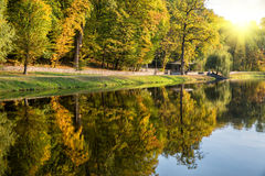 Autumn trees are reflected in the lake Royalty Free Stock Images