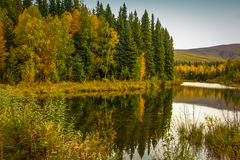 Autumn trees reflected in a lake stock photos
