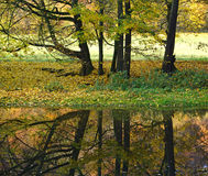 Autumn Trees Reflected in a River Royalty Free Stock Photos