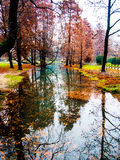 Autumn trees reflected in water royalty free stock photos