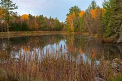 Fall colors reflection in pond stock images