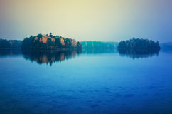 Autumn trees reflecting on lake royalty free stock image
