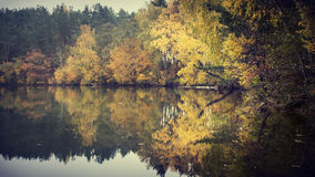 Autumn trees reflecting on lake. Scenic view of autumn trees reflecting on lake Luokesai, Moletai, Lithuania stock photo