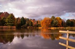 Autumn trees reflecting in lake. Royalty Free Stock Images
