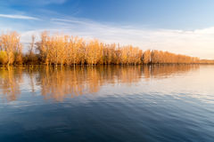 Autumn trees reflecting in the river Royalty Free Stock Images