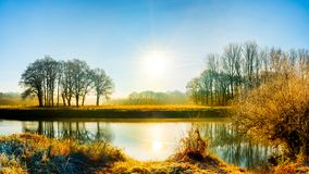 Trees reflecting in River Ems. Autumn trees reflecting on the surface of the River Ems in Emsland, Lower Saxony, Germany Royalty Free Stock Photos