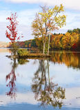 Autumn trees reflecting in the water. With blue sky royalty free stock image