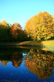 Autumn trees reflection 2 Royalty Free Stock Images