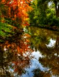 Autumn Trees Reflection. Beautiful autumn colored trees reflecting in a stream royalty free stock photos