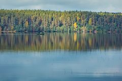 Autumn trees with reflection Royalty Free Stock Photography