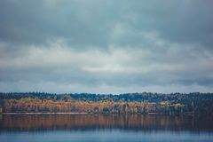 Autumn trees with reflection Royalty Free Stock Photo