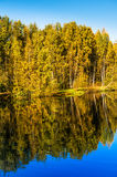Autumn trees and reflection in water of pond Stock Photography