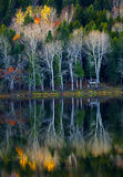 Autumn Trees Reflections Water Royalty Free Stock Photo