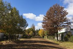 Autumn trees in Rhodes. South Africa stock photos