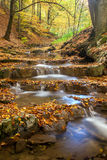 Autumn trees and river. Autumn landscape with trees and river Royalty Free Stock Photo