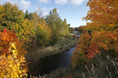 Autumn trees and river Stock Photos
