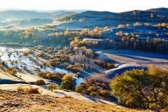 The autumn trees on riverside Stock Photography