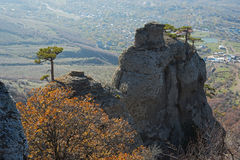Autumn trees and rocks Royalty Free Stock Photography