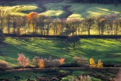Golden racking light autumn trees Peak district UK stock photo