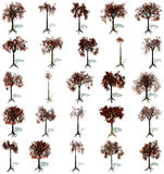 Autumn trees set Royalty Free Stock Photos