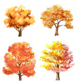 Autumn trees. Set of watercolor hand drawn autumn trees isolated on white Stock Photography