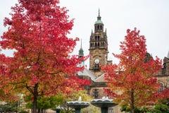 Autumn Trees Sheffield Town Hall Royalty-vrije Stock Afbeeldingen