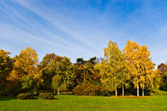 Autumn trees and sky Royalty Free Stock Photography