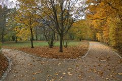 Autumn. Royalty Free Stock Images
