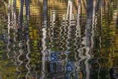 Autumn Trees som reflekterar i en flod - Ontario, Kanada Arkivbilder