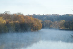 Autumn trees stand of foggy river Stock Photos