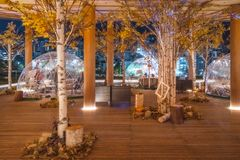 Autumn trees at the top level of Orizuru Tower, Hiroshima, Japan. Orizuru Tower, Hiroshima, Japan -November 6, 2018: People enjoying an Interesting autumn royalty free stock photography