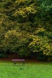 Autumn Trees und leere Bank Lizenzfreies Stockfoto