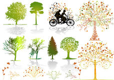 Autumn trees - vector royalty free stock photos