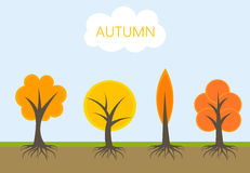 Autumn trees vector. Autumn trees in nature. Vector illustration Royalty Free Stock Photo