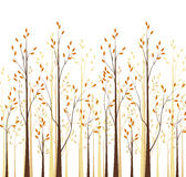 Autumn trees. Vector autumn tree on a white background Stock Image