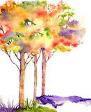 Autumn trees. Vibrant yellow, orange, red, purple and green autumn watercolor painted trees Stock Photography