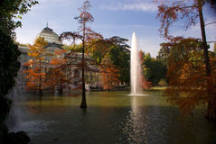 Autumn trees in water Royalty Free Stock Images