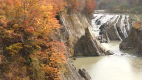Autumn trees and waterfall stock footage