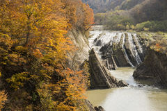 Autumn trees and waterfall Stock Photo
